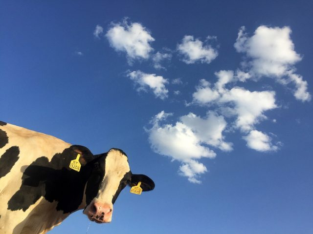 20 percent of Americans responsible for almost half of US food related greenhouse gas emissions