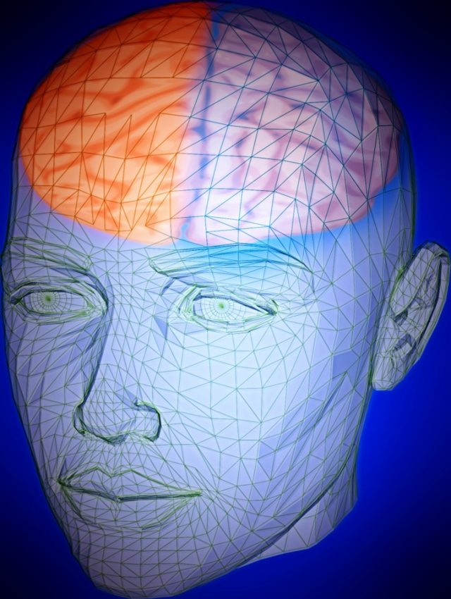 Brain activity at rest provides clue to intelligence
