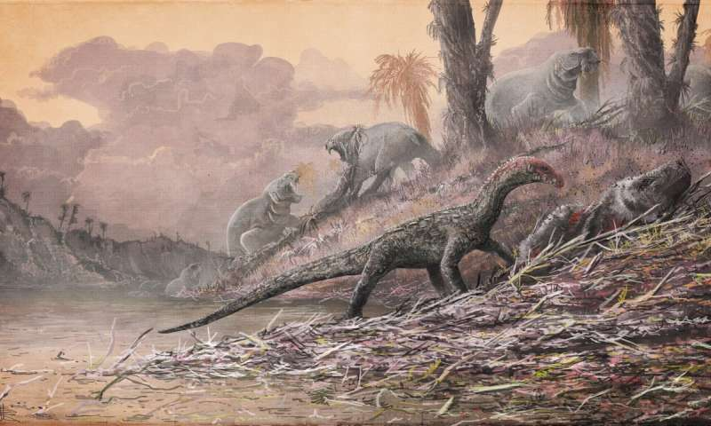 Decade of fossil collecting gives new perspective on Triassic period emergence of dinosaurs