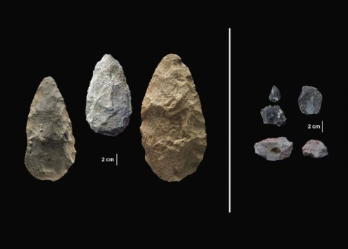 Scientists discover evidence of early human innovation pushing back evolutionary timeline