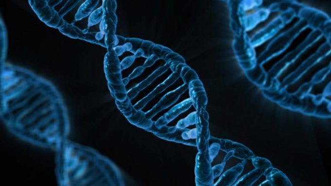 Study finds that genes play a role in empathy