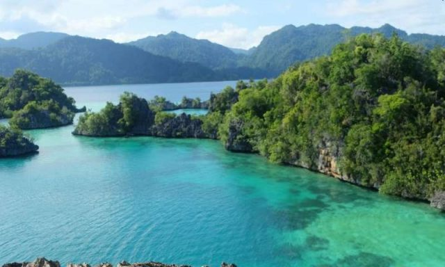 Wildlife haven of Sulawesi much younger than first thought according to new research