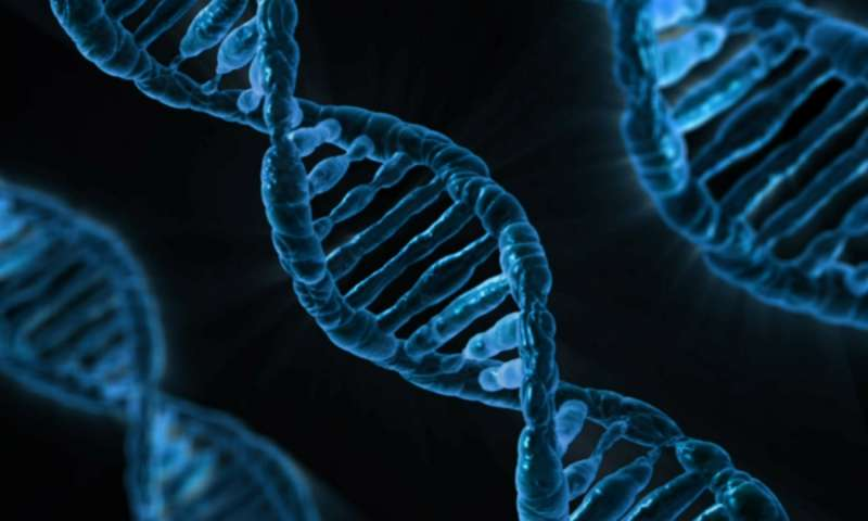 Microbe breaks universal DNA rule by using two different translations