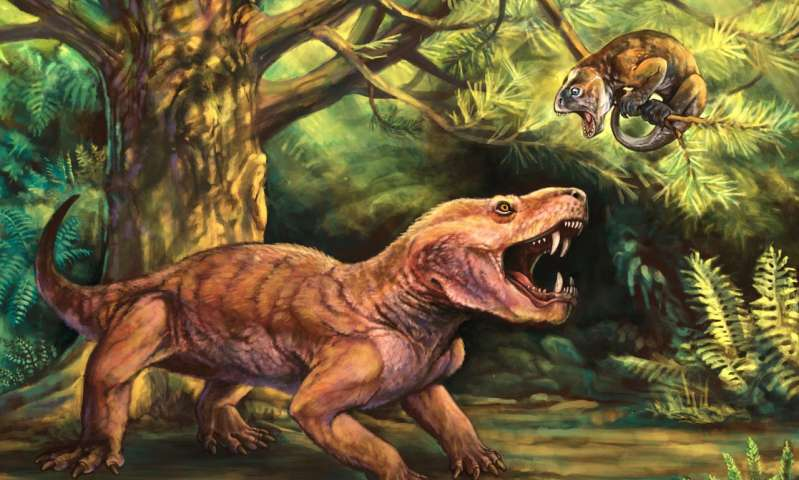 Monstrous new Russian saber tooth fossils clarify early evolution of mammal lineage