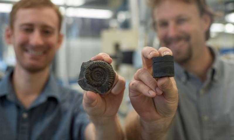 Volcanic activity declining ocean oxygen triggered mass extinction of ancient organisms