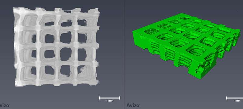 Engineering 3 D bio printed scaffolds to regenerate damaged peripheral nervous systems