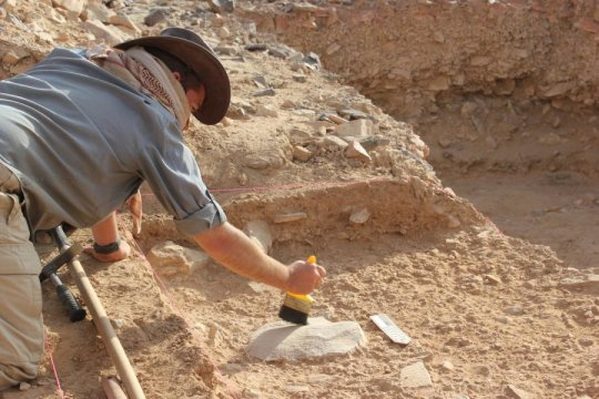 Laziness helped lead to extinction of Homo erectus