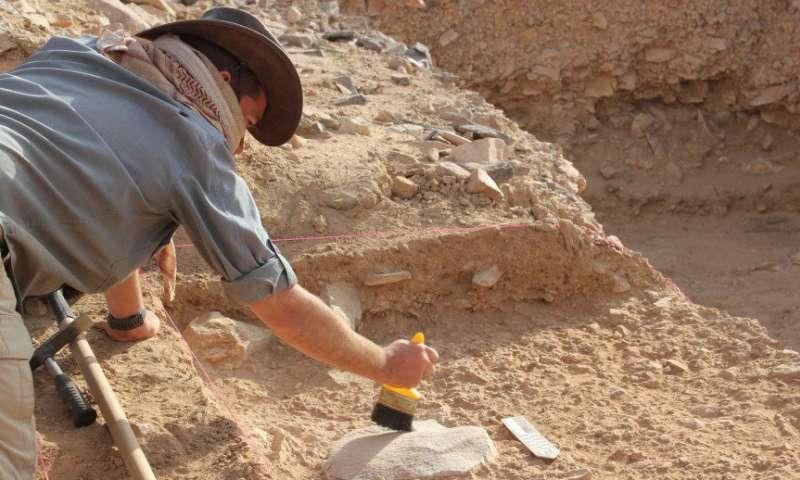 Laziness led to extinction of Homo erectus