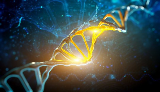 Human genome could contain up to 20 percent fewer genes researchers reveal