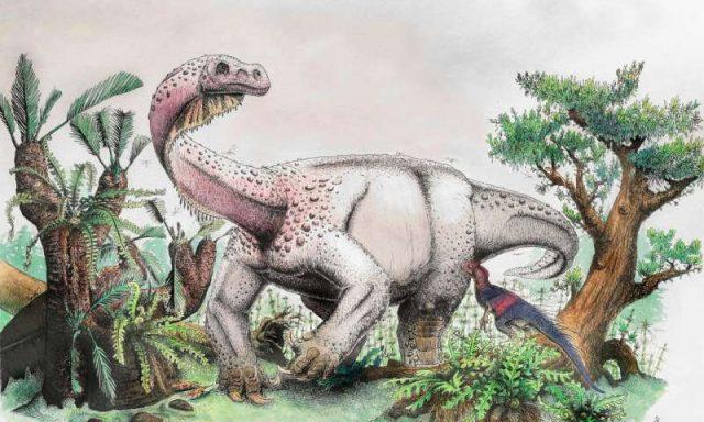 Ledumahadi mafube—South Africas new jurassic giant