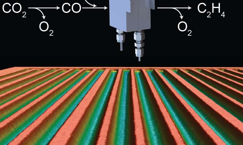 Efficient electrochemical cells for CO2 conversion