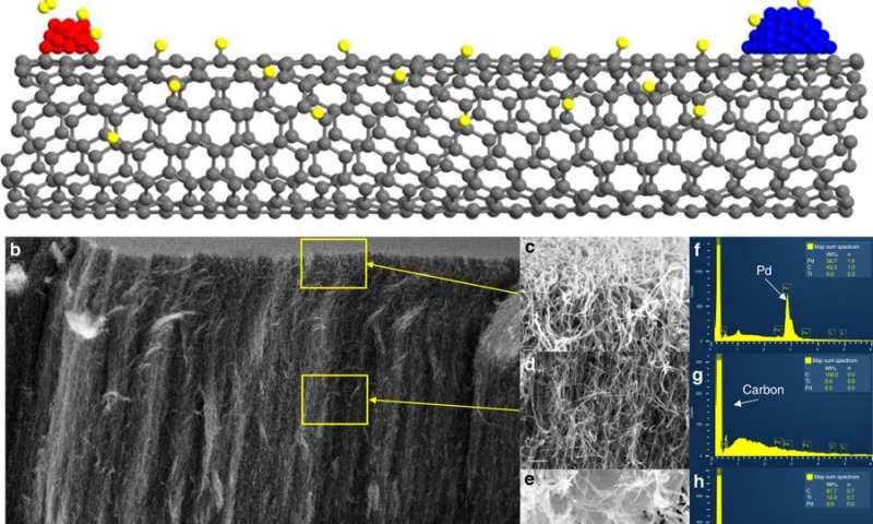 Researchers determine catalytic active sites using carbon nanotubes