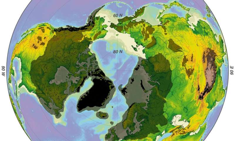 True polar wander may have caused ice age