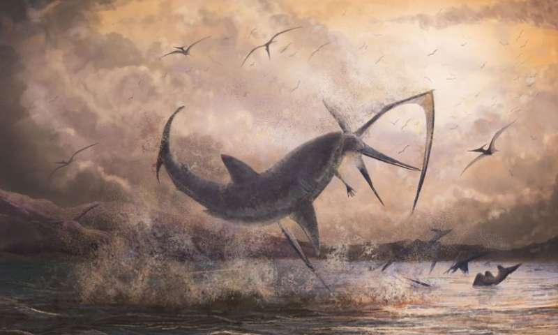 Evidence of a fearsome shark taking down a pterosaur in mid flight