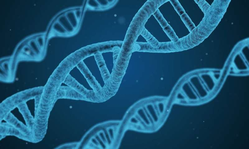 Gene variations linked to higher risk of diabetes and heart attacks