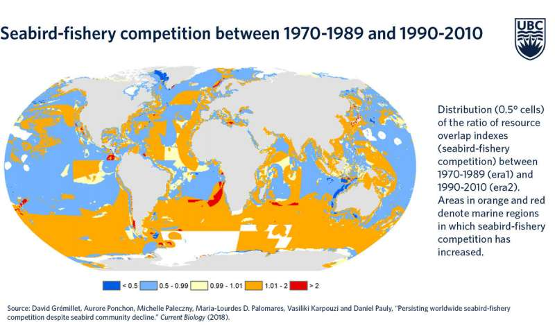 Industrial fisheries are starving seabirds all around the world