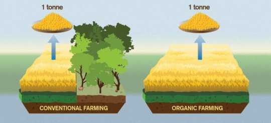 Organic food worse for the climate