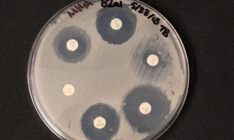 Stop sterilizing your dust—Antimicrobial chemical tied to antibiotic resistance genes in dust