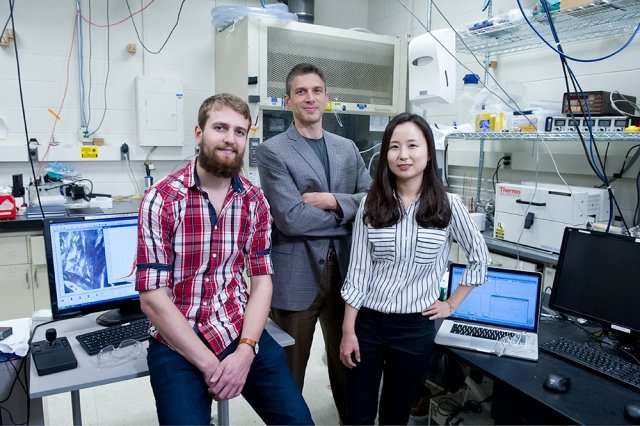 Thermal energy storage Material absorbs heat as it melts and releases it as it solidifies
