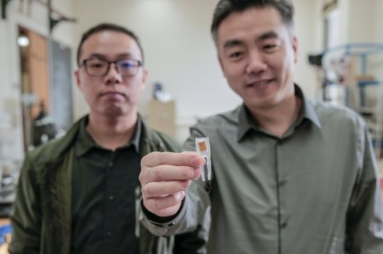 Tiny implantable device short circuits hunger pangs aids weight loss