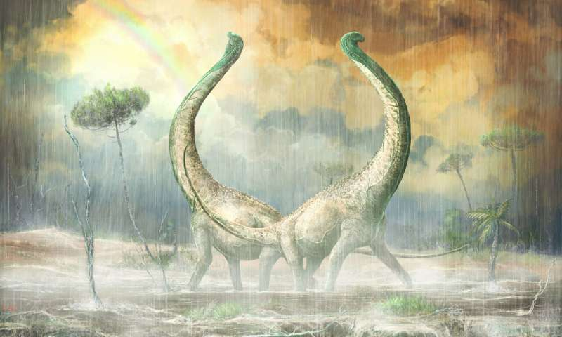 Mnyamawamtuka New dinosaur with heart shaped tail provides evolutionary clues for African continent