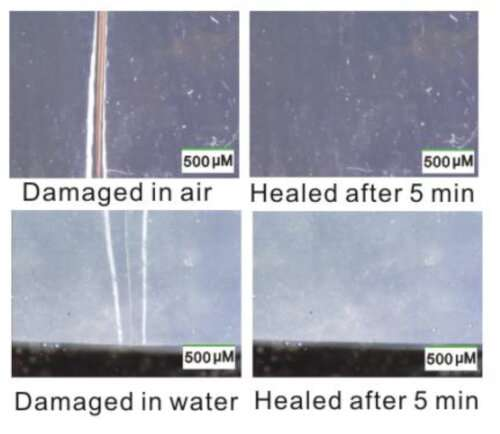Scientists discover new type of self healing material