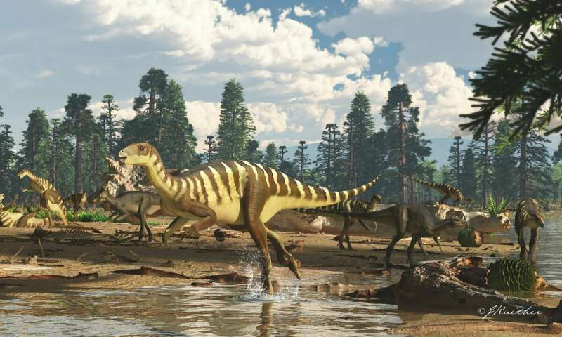 New wallaby sized dinosaur from the ancient Australian Antarctic rift valley