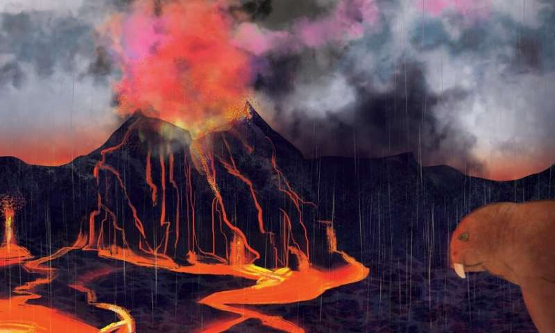 New evidence suggests volcanoes caused biggest mass extinction ever 1