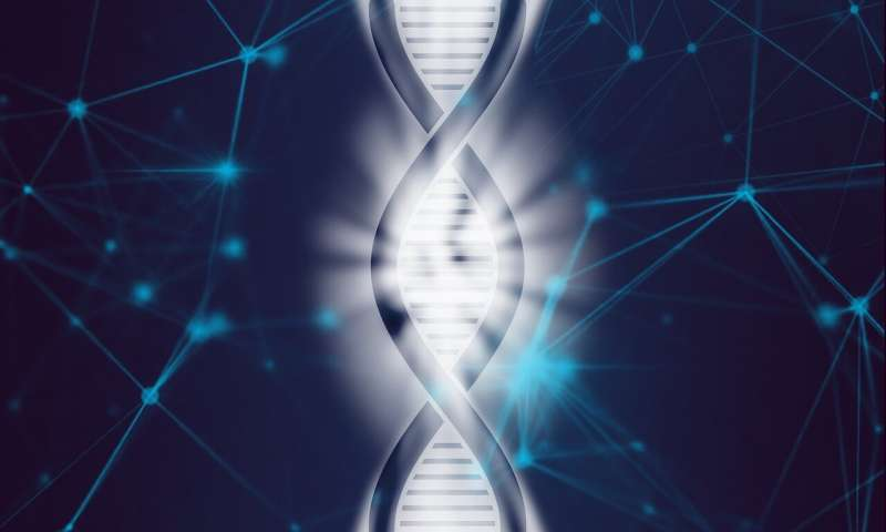 Activation of gene promoters Scientists discover basis of regulatory specificity