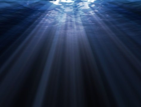 New type of highly sensitive vision discovered in deep sea fish