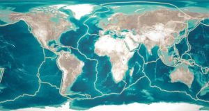 Plate tectonics may have driven Cambrian Explosion