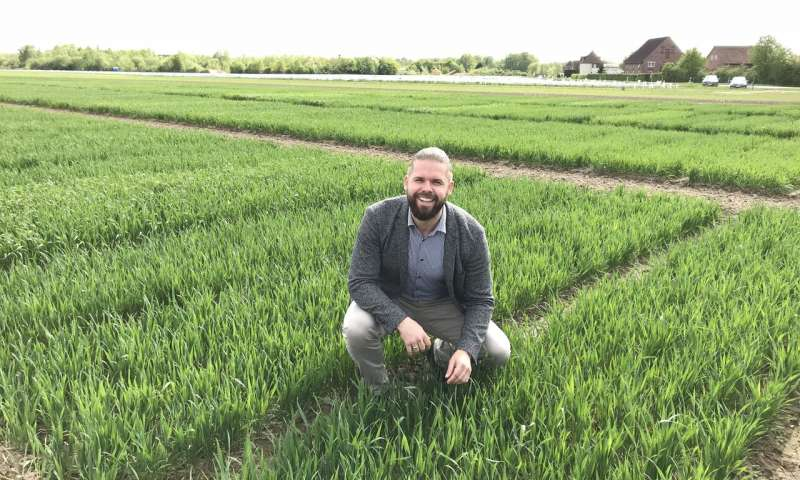 Wheat myth debunked by a major new study