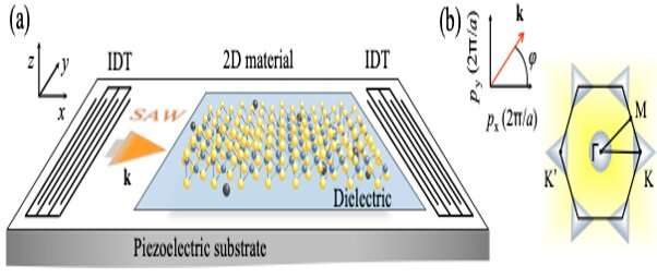 Unconventional phenomena triggered by acoustic waves in 2 D materials