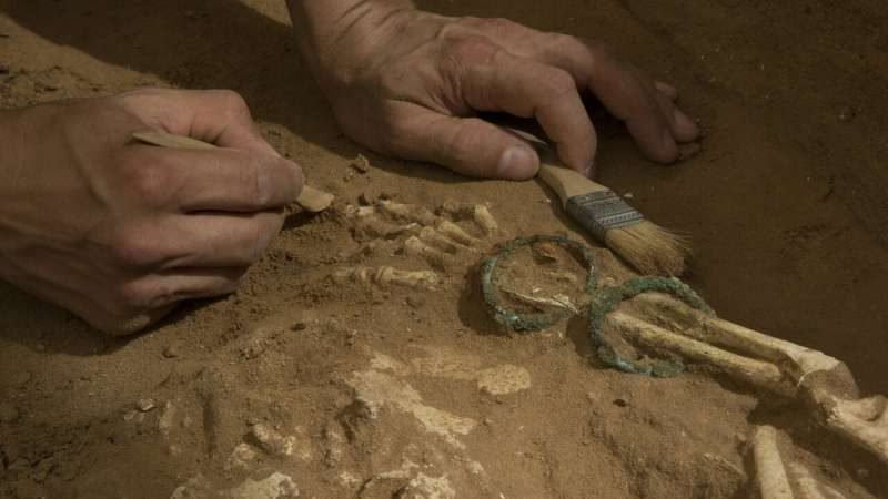 cropped Ancient DNA sheds light on the origins of the Biblical Philistines