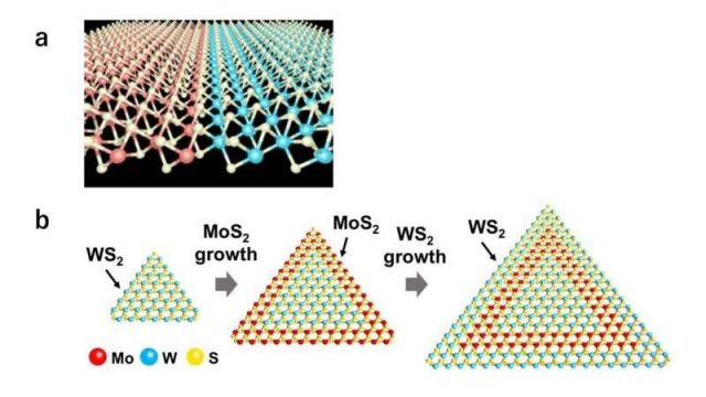 cropped Atomic patchwork using heteroepitaxy for next generation semiconductor devices