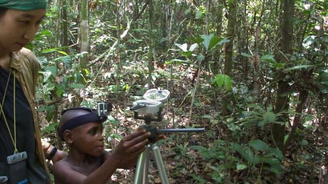 cropped Finding ones way in the rainforest