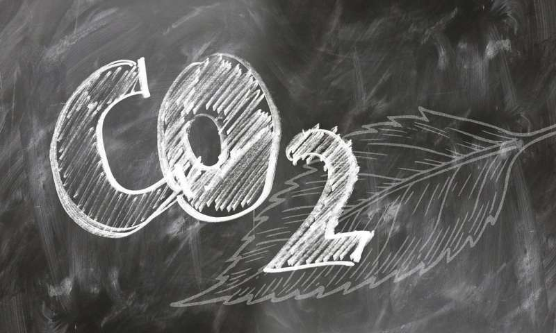 Satellite study reveals that area emits one billion tonnes of carbon