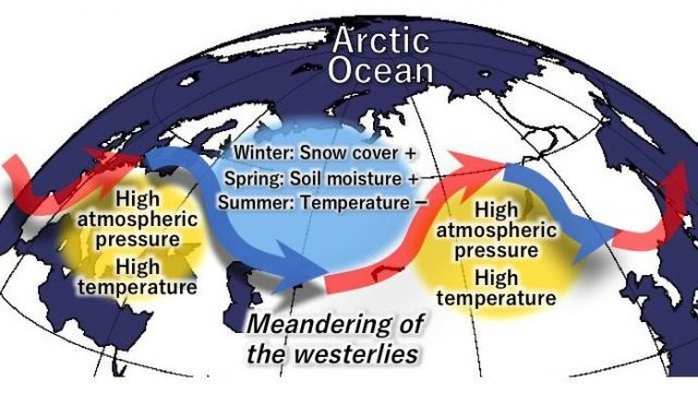 cropped Deep snow cover in the Arctic region intensifies heat waves in Eurasia