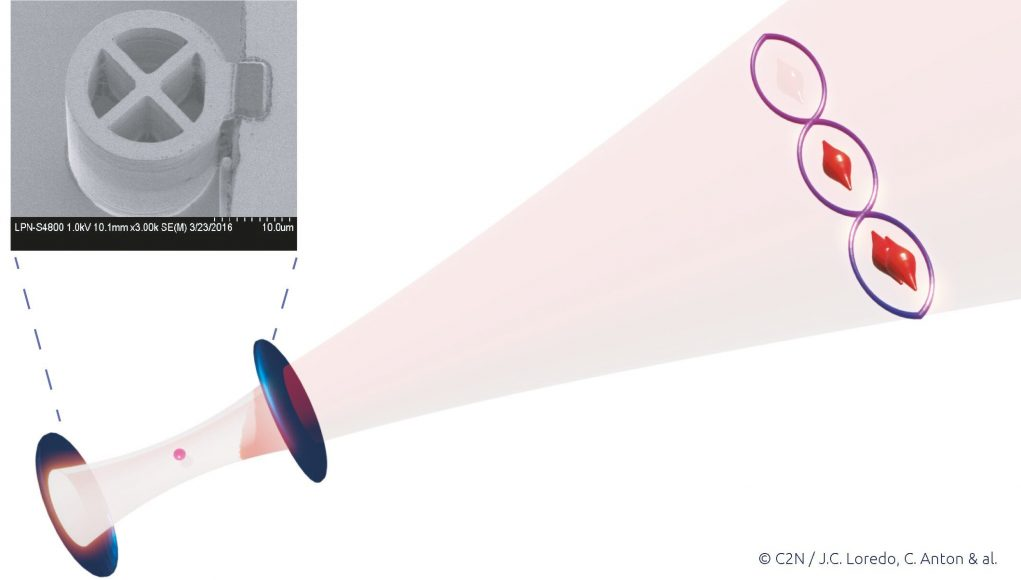 cropped Generation of light in a photon number quantum superposition