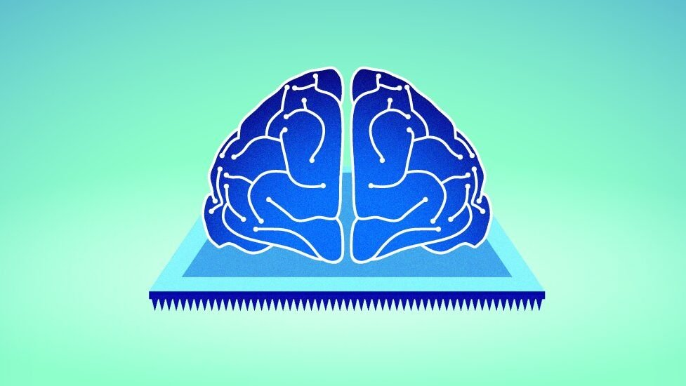 cropped Physicists create device for imitating biological memory