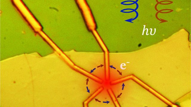 cropped Unique electrical properties in quantum materials can be controlled using light