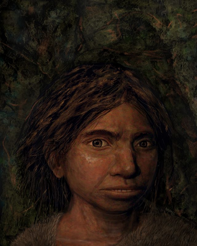 First glimpse at what ancient Denisovans may have looked like using DNA methylation data