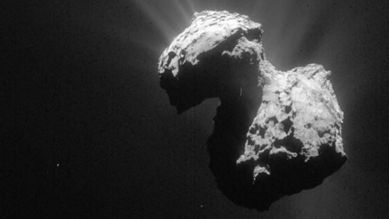 cropped All comets in the solar system might come from the same place