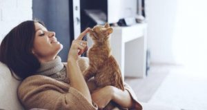cropped Cats are securely bonded to their people too