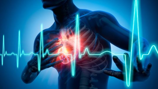 cropped FDA phase 1 trial shows hydrogel to repair heart is safe to inject in humans a first