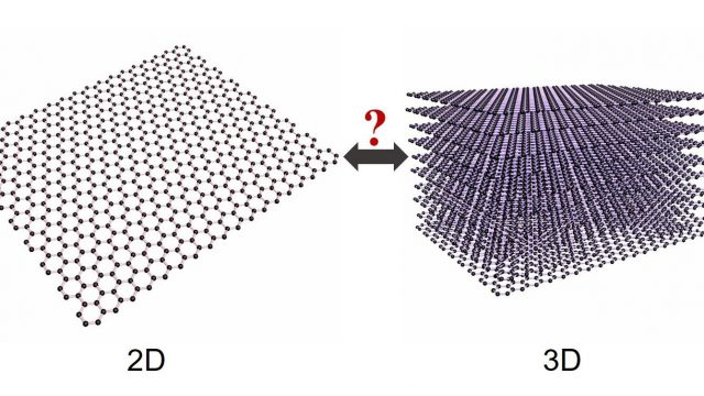 cropped Graphene is 3 D as well as 2 D