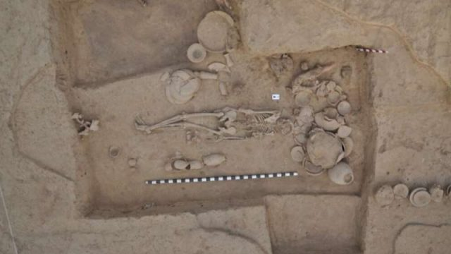 cropped Largest ever ancient DNA study illuminates millennia of South and Central Asian prehistory