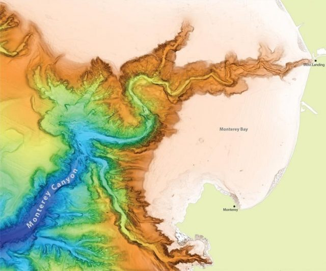 Global analysis of submarine canyons may shed light on Martian landscapes 1