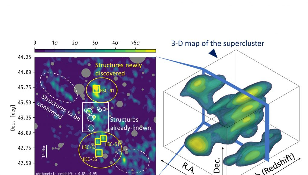 The whole picture of a distant supercluster in three dimensions