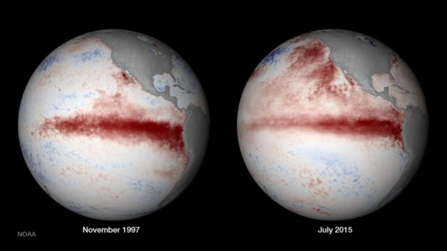 El Nino swings more violently in the industrial age compelling hard evidence says